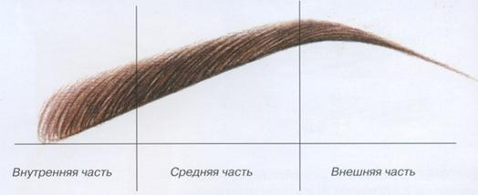 korrekcija_brovej