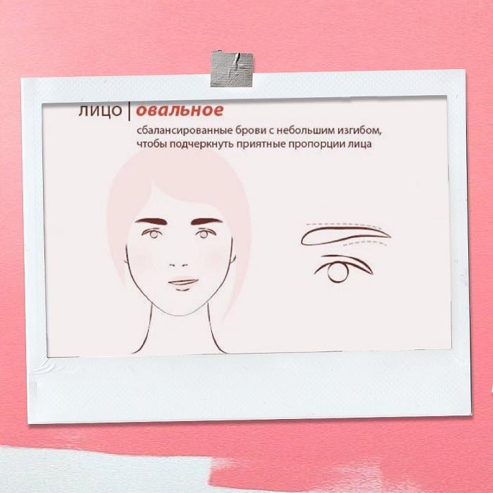Тип лица для правильной форма бровей