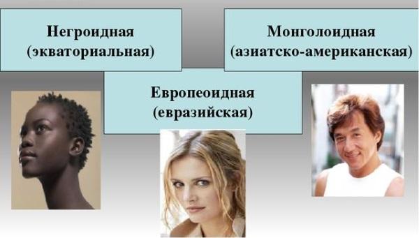 Типы волос у женщин и мужчин по цвету, структуре. Фото, как определить, характеристика, уход: краски для окрашивания, шампуни, бальзамы, средства